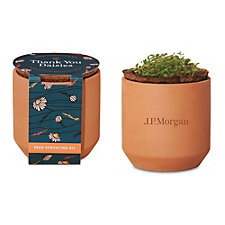 Modern Sprout Tiny Terracotta Grow Kit Thank You Daisies - J.P. Morgan