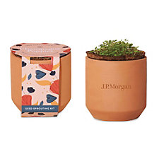Modern Sprout Tiny Terracotta Grow Kit Champagne Poppies - J.P. Morgan
