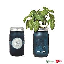 Modern Sprout Indoor Herb Garden Kit - Basil - Chase