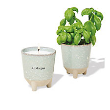 Modern Sprout Glow and Grow Live Well Gift Set - Basil - J.P. Morgan