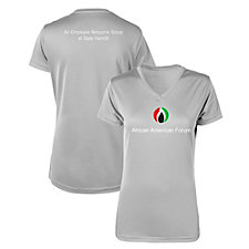 Ladies Microfiber Performance V-Neck T-Shirt - AAF