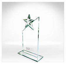 Star Glass Award - 5-1/2 in. W  x 8-3/4 in. H x 2-1/2 in. D