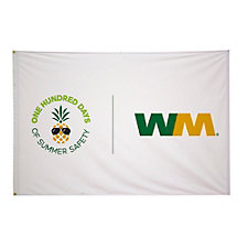 Double-Sided Polyester Flag - 4 ft. x 6 ft. - 100 Days of Summer